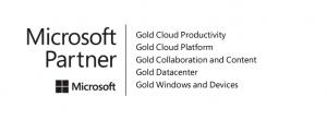 Microsoft Competencies