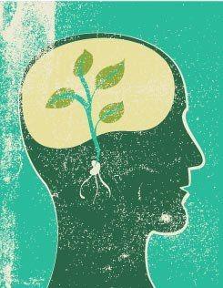Cultuur in DevOps, stimuleren van leren